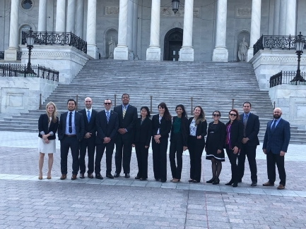 <p>Twelve SIR members visited Capitol Hill on May 15–16, 2018, for SIR's fifth annual Grassroots Leadership Program: Jeremy D. Collins, MD; Waleska M. Pabon-Ramos, MD, MPH, FSIR; Kristi Bogan, MD; Jesse Chen, MD; Charles (Chuck) Martin, MD; Teodora Bochnakova, MD; Diane Szaflarski, DO; Mircea Cristescu, MD, MBA; Enn A. Chen, MD; Elie R. Balesh, MD; Casey Branach, MD; and Tina Sankhla, MD.                                                                                                                                                            </p>